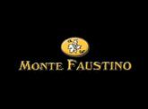 Monte Faustino
