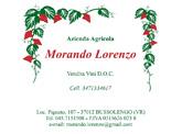 Morando Lorenzo